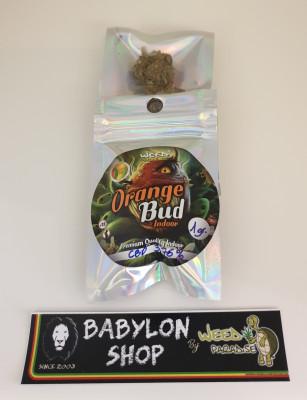Orange Bud (CBD -0,2 % THC - Indoor)