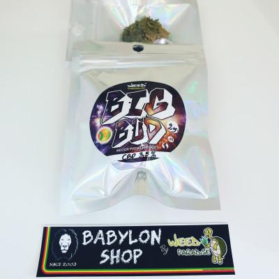 Big Bud (CBD -0,2% THC - Indoor)