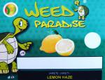 Lemon Haze (CBD -0,2% THC)