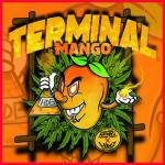 Terminal Mango Féminisée - High Line Collection