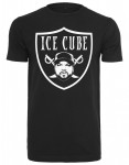ICE CUBE (DESTOCKAGE)